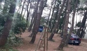 Tayakadın Ormanlık Alanda İntihar